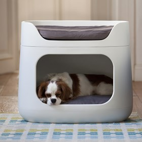 Cama e Puff para Pet Tobby C/Almofada